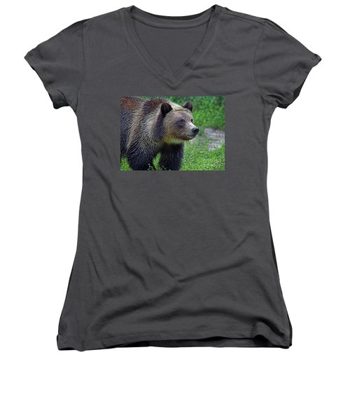 Juvie Grizzly Women's V-Neck T-Shirt (Junior Cut) by Larry Nieland
