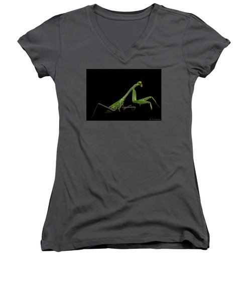 Katydid In Black Women's V-Neck (Athletic Fit)