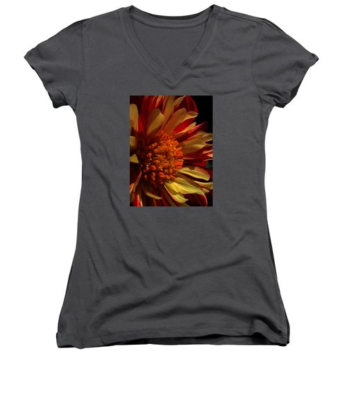 Keep Me Guessing Women's V-Neck (Athletic Fit)