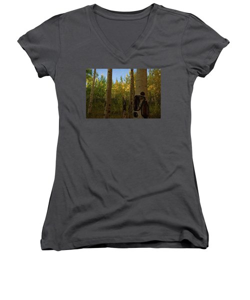Kenosha Pass Women's V-Neck T-Shirt