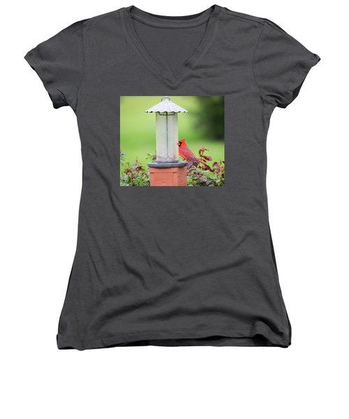 Women's V-Neck T-Shirt featuring the photograph Kentucky Cardinal  by Ricky L Jones
