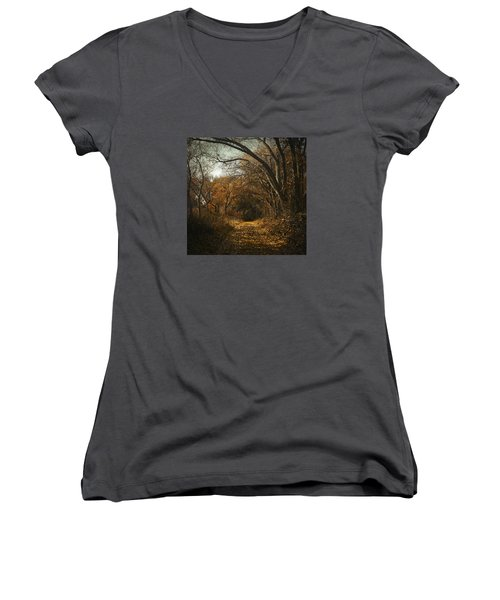 Kern River Preserve - December 2015-2 Women's V-Neck (Athletic Fit)