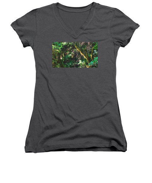 Ketchikan Green Women's V-Neck T-Shirt