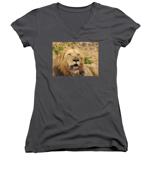 Women's V-Neck T-Shirt (Junior Cut) featuring the photograph King by Betty-Anne McDonald