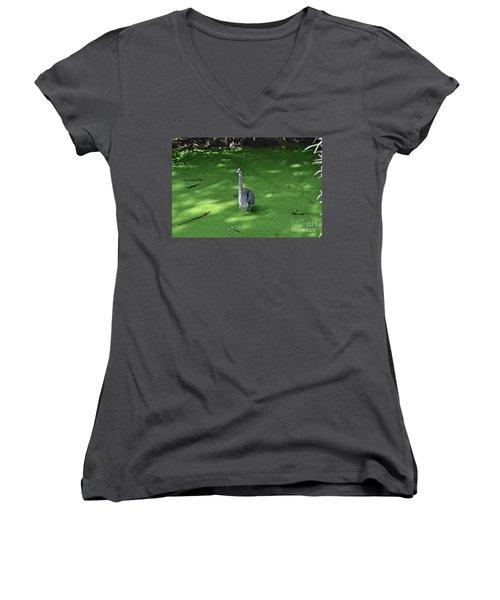 Women's V-Neck T-Shirt (Junior Cut) featuring the photograph Knee Deep by Carol  Bradley