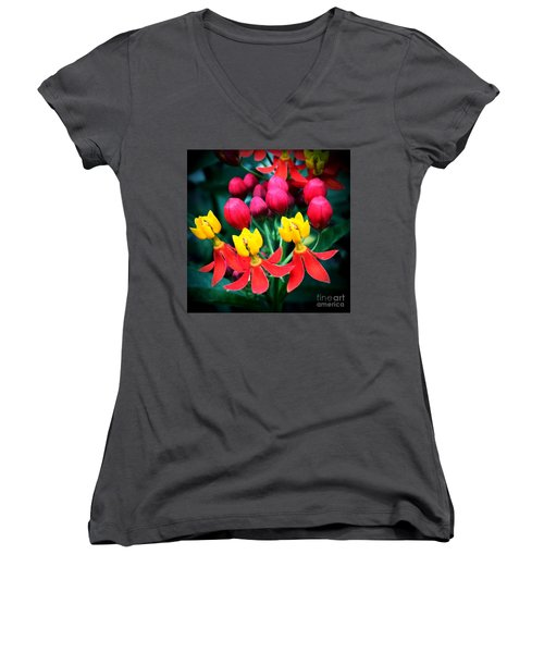 Ladies In Waiting Women's V-Neck T-Shirt