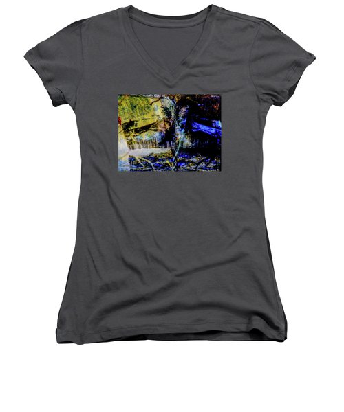 Lady At The Beach Through The Frozen Falls Women's V-Neck (Athletic Fit)