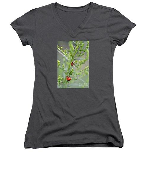 Ladybug Ladybug... Women's V-Neck (Athletic Fit)