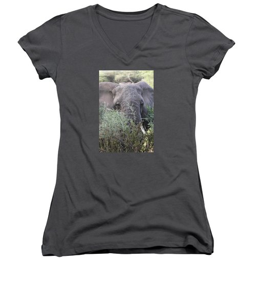 Women's V-Neck T-Shirt (Junior Cut) featuring the photograph Lake Manyara Elephant by Gary Hall
