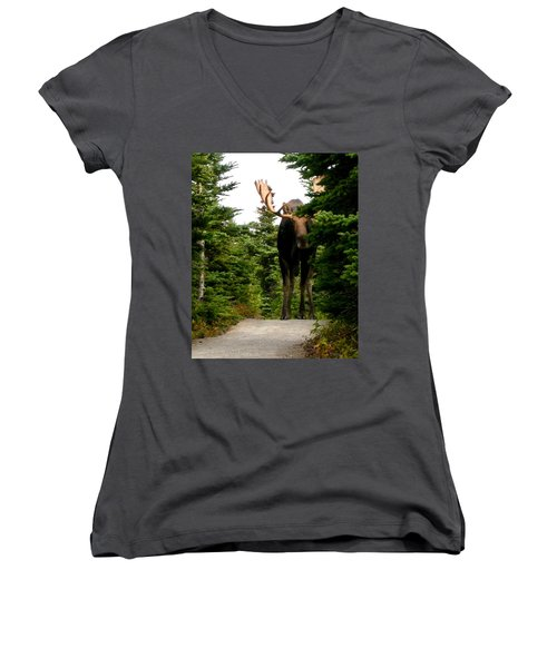 Large Moose Women's V-Neck (Athletic Fit)