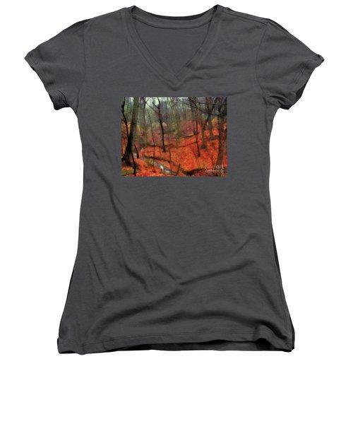 Last Days Of Autumn Women's V-Neck T-Shirt (Junior Cut) by Cedric Hampton