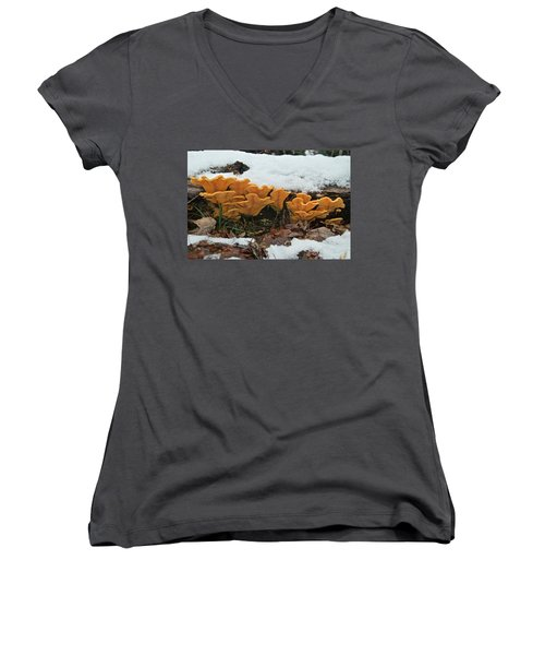 Last Mushrooms Of The Seasons Women's V-Neck T-Shirt (Junior Cut) by Michael Peychich