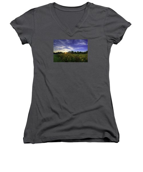Last Rays Over The Flowers Women's V-Neck