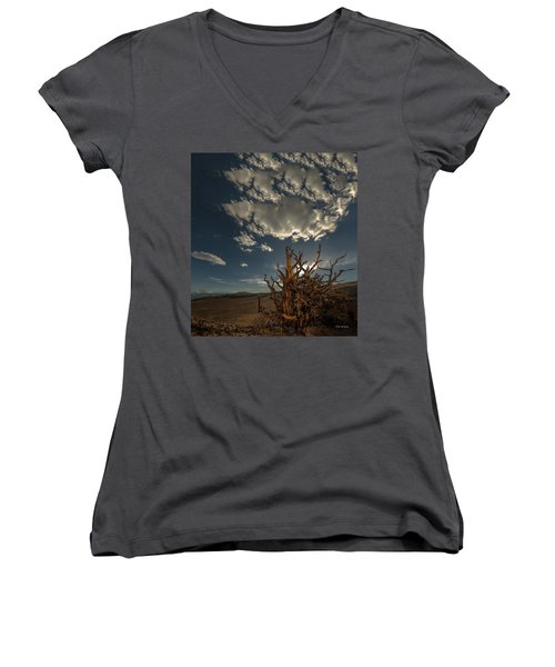 Late Afternoon In The Bristlecone Forest Women's V-Neck