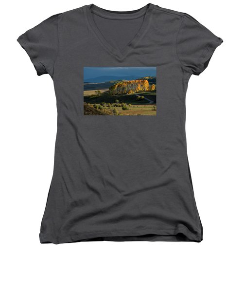 Late Stand Women's V-Neck T-Shirt