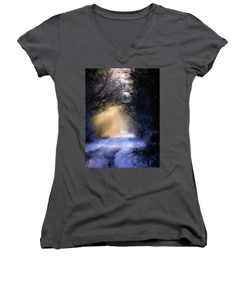 Lavander Snow  Women's V-Neck T-Shirt