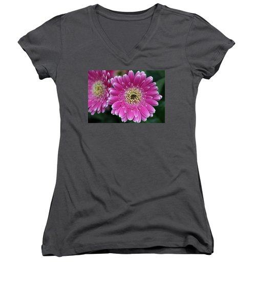 Layers Of Spring Women's V-Neck T-Shirt