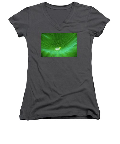 Leaf Cupping A Giant Water Drop Women's V-Neck