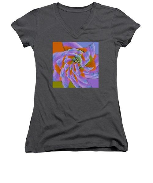 Learning To Fly Women's V-Neck T-Shirt (Junior Cut) by Robert J Sadler