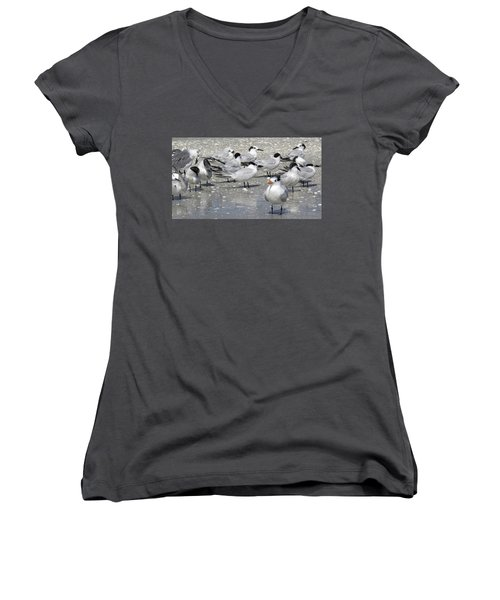 Least Terns Women's V-Neck T-Shirt (Junior Cut) by Melinda Saminski