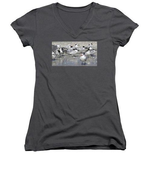 Least Terns Women's V-Neck T-Shirt