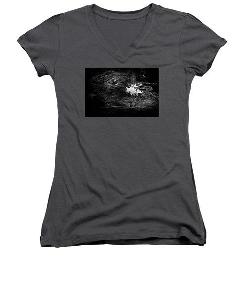 Leaves Women's V-Neck T-Shirt (Junior Cut) by David Cote