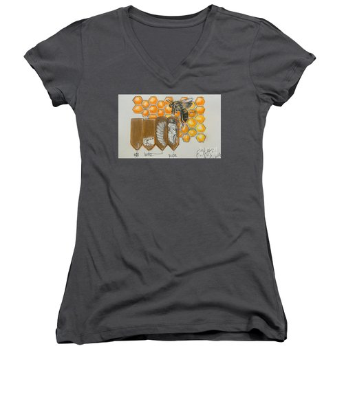 Life Cycle Of A Bee  Women's V-Neck T-Shirt (Junior Cut) by Francine Heykoop