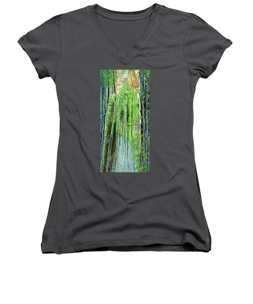 Life In A Redwood Forest Women's V-Neck T-Shirt