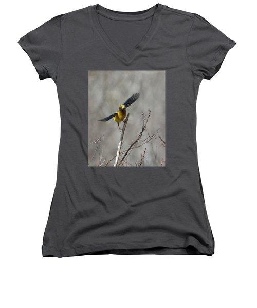 Liftoff-male Evening Grosbeak Women's V-Neck T-Shirt
