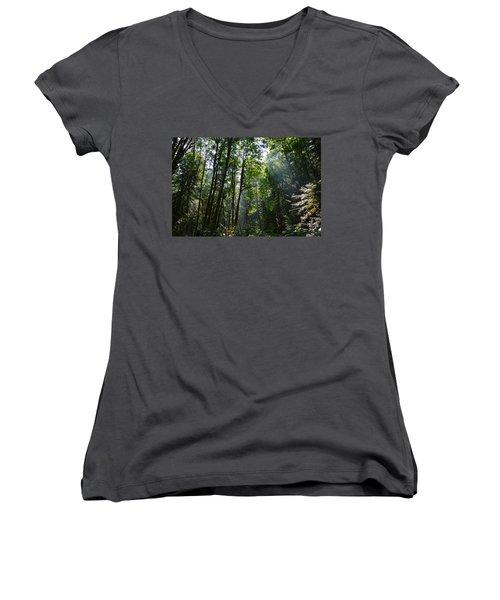 Light In The Forest Women's V-Neck