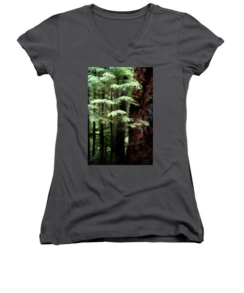Light On Trees Women's V-Neck