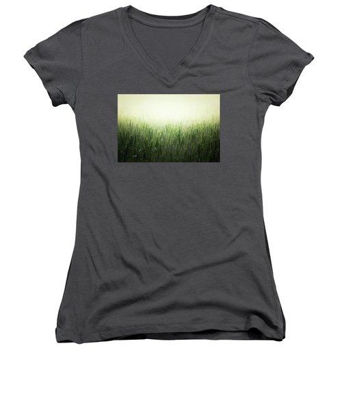 Light Storm Women's V-Neck T-Shirt (Junior Cut) by Peter Scott