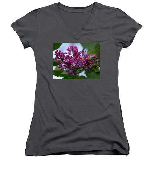 Lilac Buds Women's V-Neck (Athletic Fit)