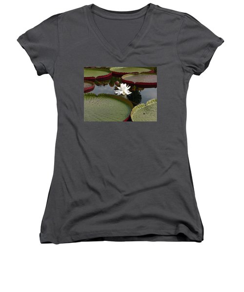 Lily Women's V-Neck T-Shirt