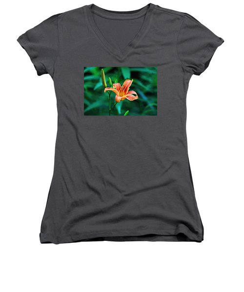 Lily In Woods Women's V-Neck