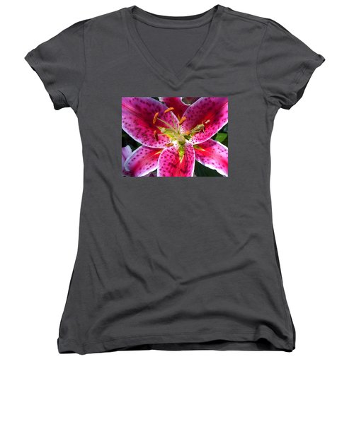 Lily Women's V-Neck T-Shirt (Junior Cut) by Mary-Lee Sanders