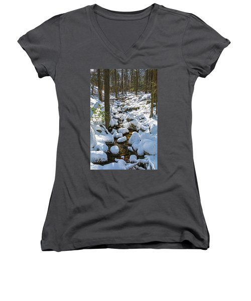 Lily Pads Of Snow Women's V-Neck T-Shirt (Junior Cut) by Angelo Marcialis