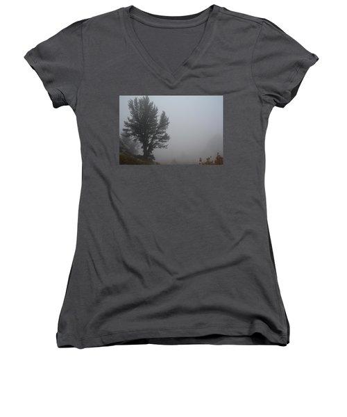 Women's V-Neck T-Shirt (Junior Cut) featuring the photograph Limber Pine In Fog by Jenessa Rahn