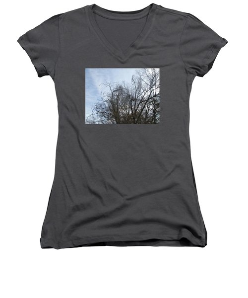 Limbs In Air Women's V-Neck T-Shirt