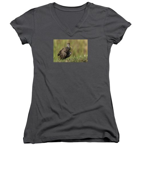Limpkin Stretching In The Grass Women's V-Neck (Athletic Fit)