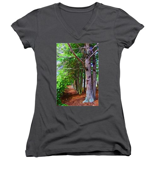 Lincoln's Path Women's V-Neck T-Shirt (Junior Cut) by Joan Reese
