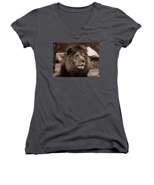 Women's V-Neck T-Shirt (Junior Cut) featuring the photograph Lion King by Lisa L Silva