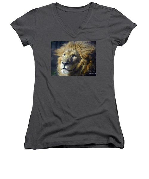 Women's V-Neck T-Shirt (Junior Cut) featuring the photograph Lion Portrait by Savannah Gibbs