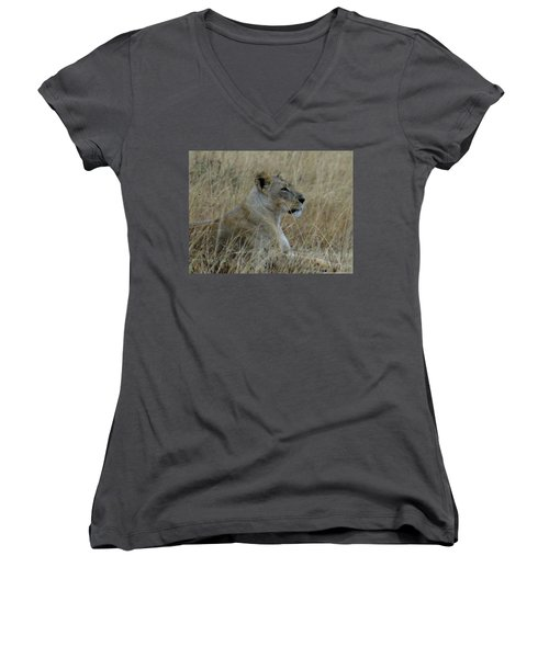 Lioness In The Grass Women's V-Neck (Athletic Fit)