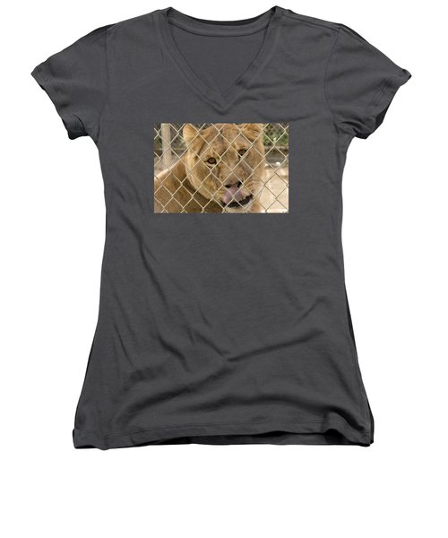 Lioness Licks Women's V-Neck