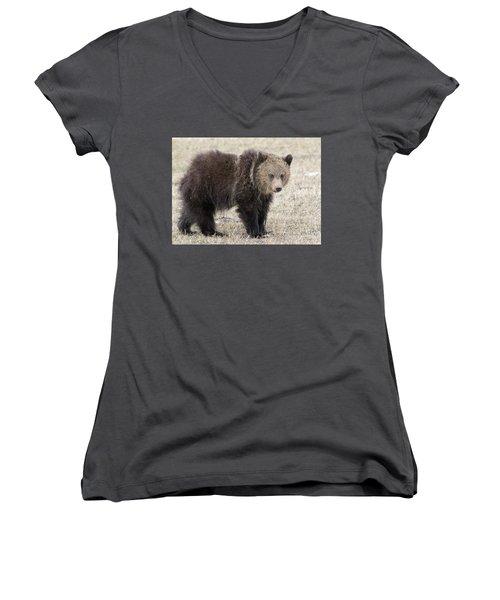 Little America Cub Women's V-Neck T-Shirt