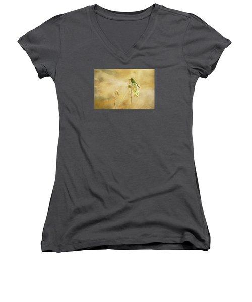 Little Bee-eater Women's V-Neck T-Shirt