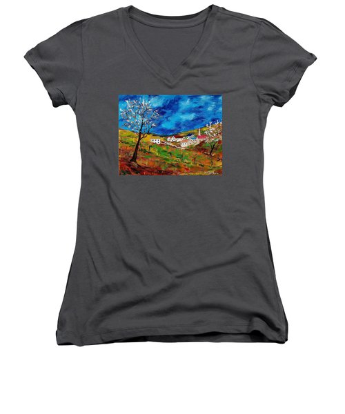 Little Village Women's V-Neck T-Shirt