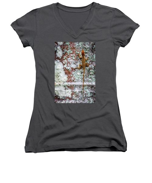 Lizard And Lichen On Brick Women's V-Neck (Athletic Fit)