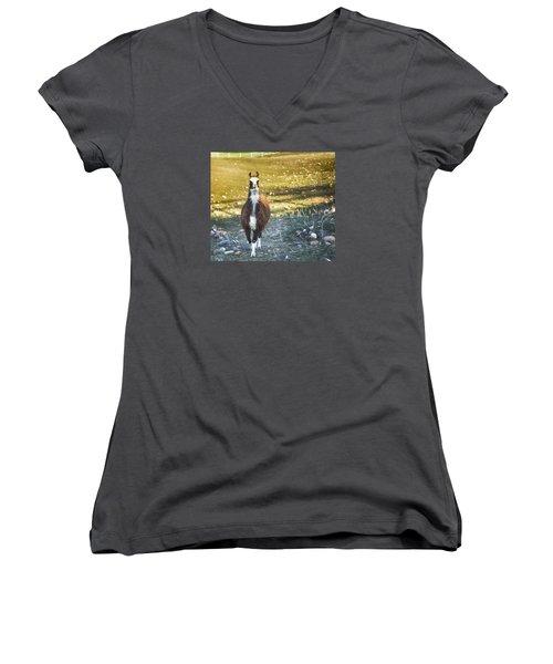 Women's V-Neck T-Shirt (Junior Cut) featuring the photograph Llama Cuteness by Theresa Tahara